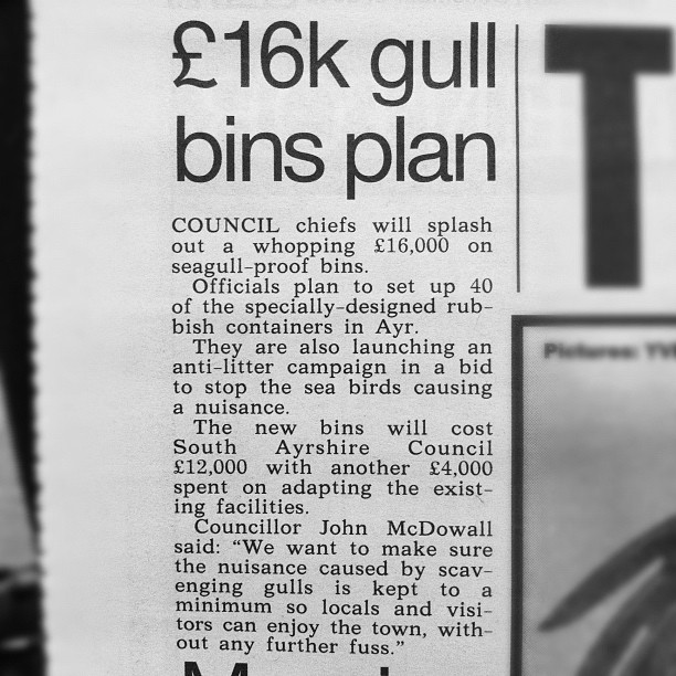 16000 pound gull bin plan news report