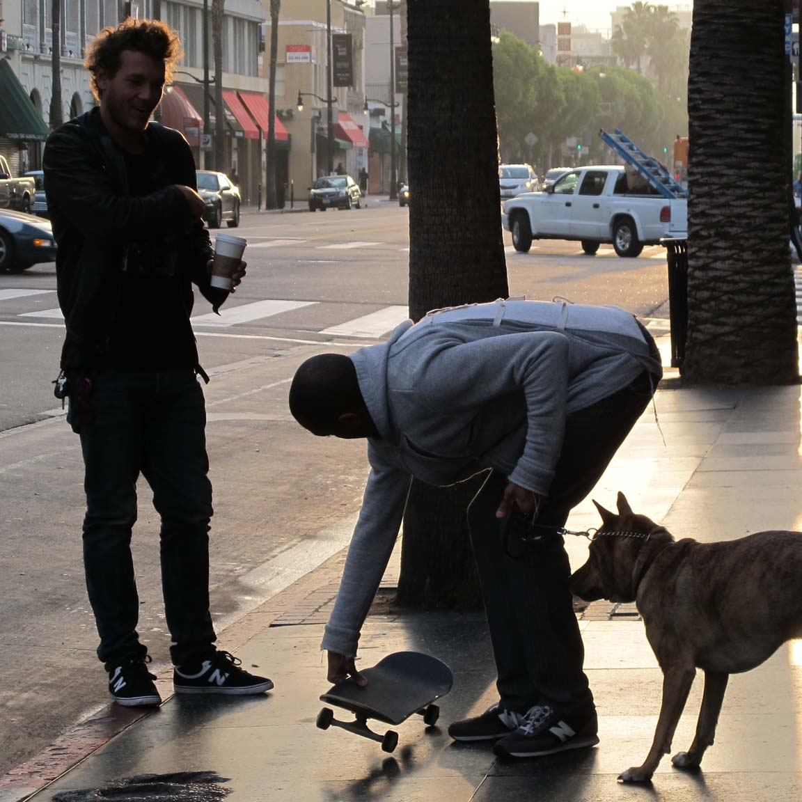 A young man attempts to train his dog to be at ease with skateboards